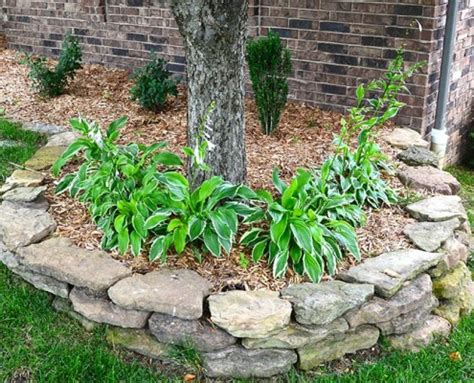 Lawn Care And Landscape Portfolio Springfield Missouri Landscaping Springfield Mo