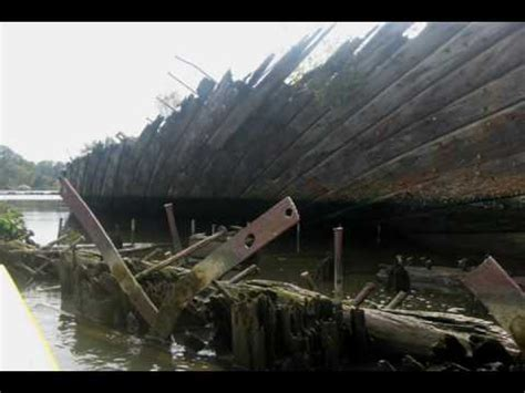 boat dog ghost dog kayaking the boat graveyard steamboat slough everett wa