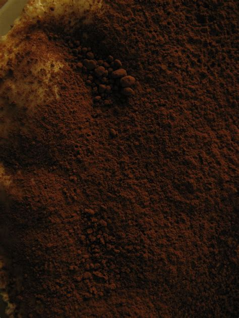 The Brown by Free Food Texture Cocoa Powder Brown