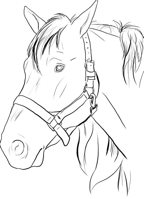 coloring pages of horseshoes free printable horse coloring pages for kids animal place