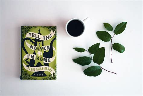 currently reading tell the wolves i m home bookswept