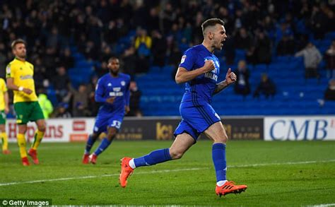 Scout Background Check Sport News Joe Ralls Is A Vital Engine In Cardiff City S Midfield