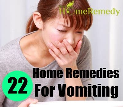 what to give a that is throwing up 22 home remedies for vomiting treatments cure for vomiting find home