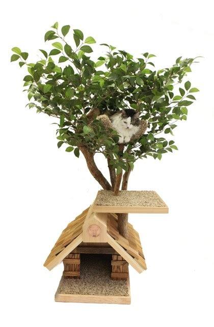 sapling small cat tree house