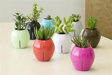 Grobal Self Watering Planter by Designapplause Grobal Karim Rashid