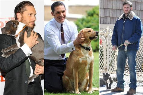 tom s dogs tom hardy s of dogs as told by tom hardy barkpost