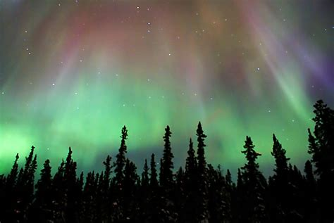 Northern Lights In Whitehorse Yukon Canada A Photo On