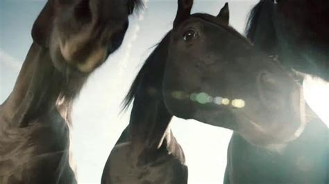 amazon commercial actress with horse amazon prime tv spot lonely horse song by sonny cher