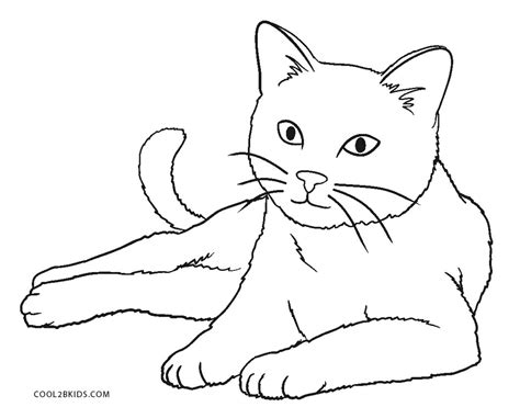 coloring pages a cat free printable cat coloring pages for kids cool2bkids