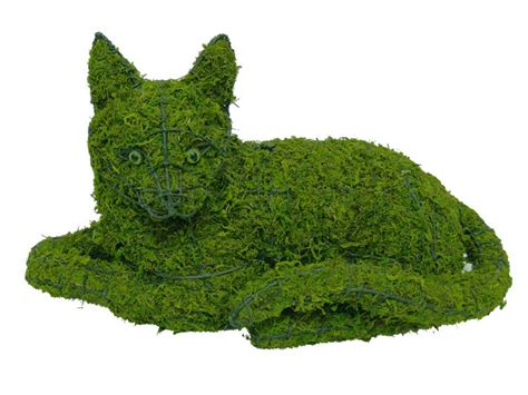 topiary frame cat lying garden topiary frame