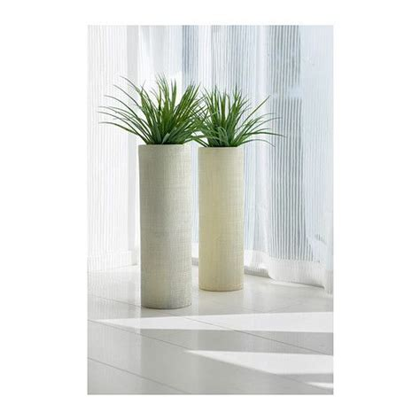 Ikea Large Floor Vase 17 best images about ikea in germany on ikea stockholm ginseng plant and