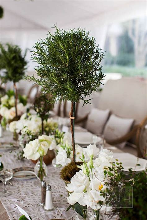 topiary centerpieces be all with topiary centerpieces b lovely events