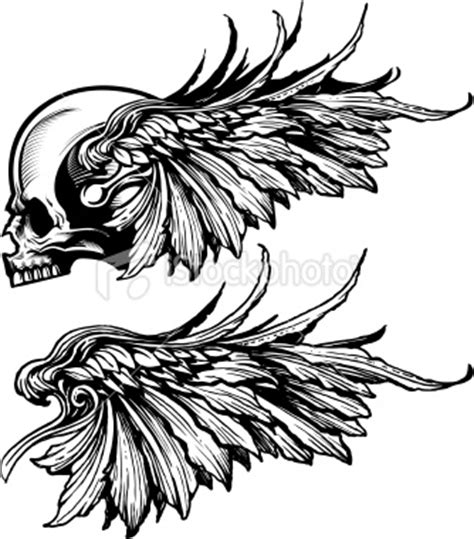 skull with wings tattoo designs lea michele skull and wings