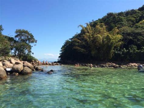 beleza da natureza fotos e imagens natureza linda picture of lagoa verde ilha grande