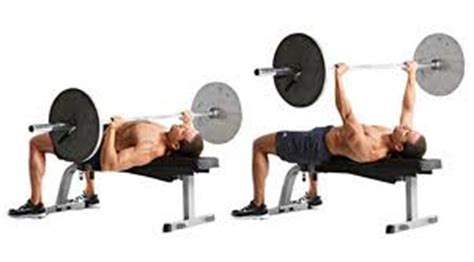 types of bench press bars flat barbell bench press peak fat loss and fitness
