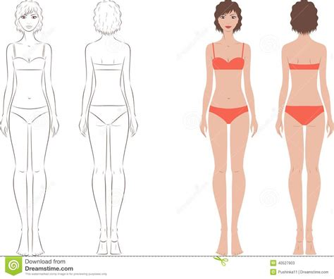 vector illustration of a stylish female silhouette stock vector image 40527903