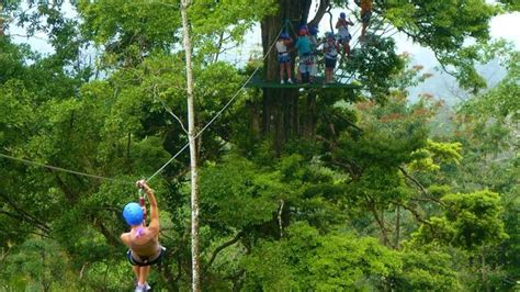 zip line swing blue river zip line and tarzan swing costa rica hotel