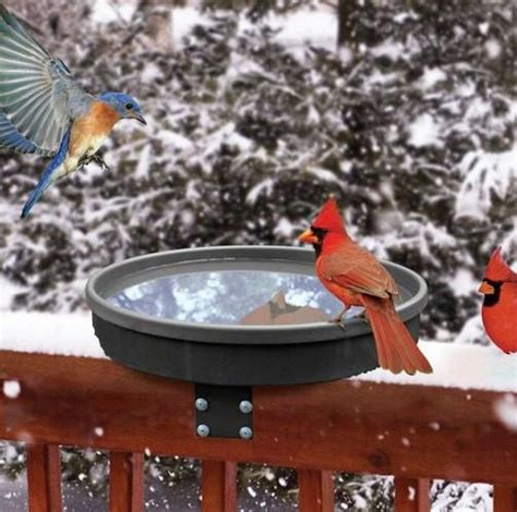 songbird spa heated deck mount bird bath the birdhouse chick