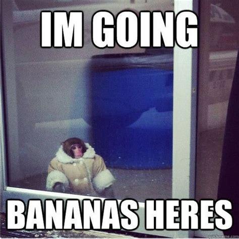 Ikea Monkey Meme - ikea monkey meme continues barnorama