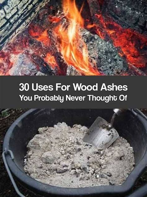 Fireplace Ashes In Garden by 17 Best Images About Compost On Raised Beds