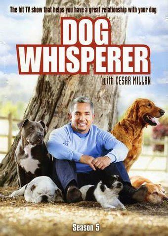 whisperer with cesar millan whisperer with cesar millan season 5 dvd 2011 television on starring cesar