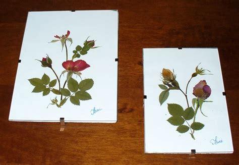 fiori essiccati vendita composizione fiori secchi fiori secchi realizzare