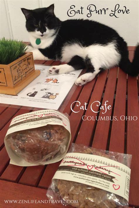 eat purr love cat cafe columbus ohio zen life and travel