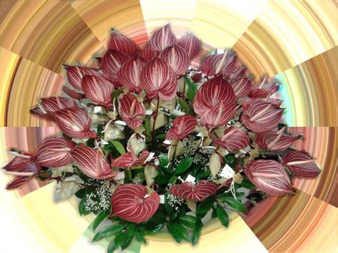 fiori ferrara fiori a ferrara flora a cassana fe