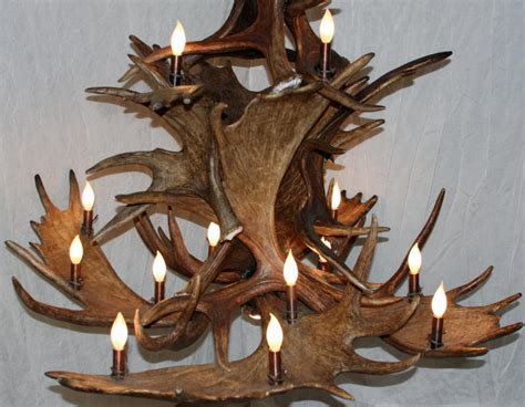 Moose Antler Chandelier Moose Antler Chandelier Moose Pool Table Antler Chandelier Rustic Deer Lodge Light Ls Ebay