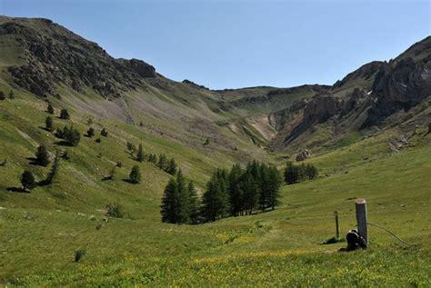 1332383939 flore des alpes maritimes vol parc national du mercantour d 233 partement des alpes maritimes