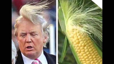 Donald Meme - bikin ngakak parade meme donald trump ganlob com
