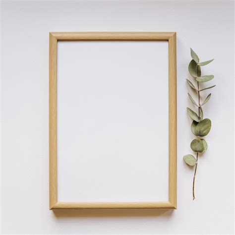 frame next to branch photo free download