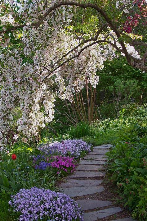 path a weeping cheery in s garden maine flower secret garden garden