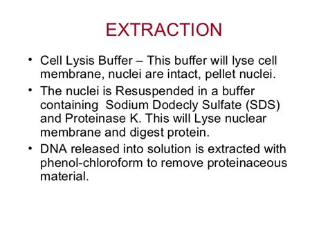 proteinase k buffer dna extraction