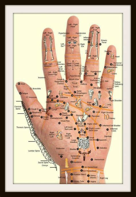 palm reading diagram palm reading noggin bloggin