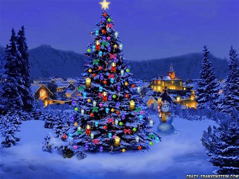 Beautiful Christmas Tree by Beautiful Christmas Tree Free Large Images