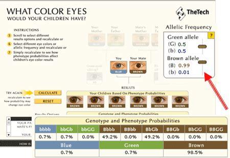 hair color calculator understanding genetics
