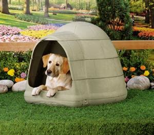 dog houses for sale at walmart dog igloo you say images frompo