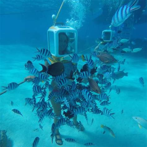 aqua dive aqua safari helmet dive picture of aqua safari helmet