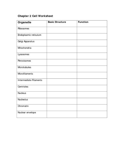 Cell Organelle Worksheet Answers by 28 Cells Organelles Worksheet Answers Cell Organelle