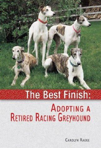 adopt a retired the best finish adopting a retired racing greyhound carolyn raeke anglais relie ebay
