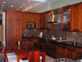 contemporary kitchen cabinets amp wholesale priced kitchen