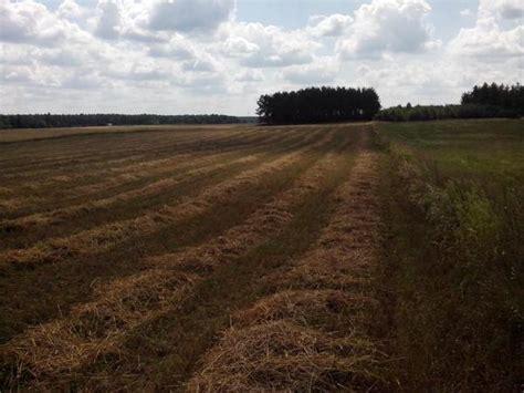 hã user zum kaufen privat landwirtschaftliche fl 228 chen in polen in nowinka