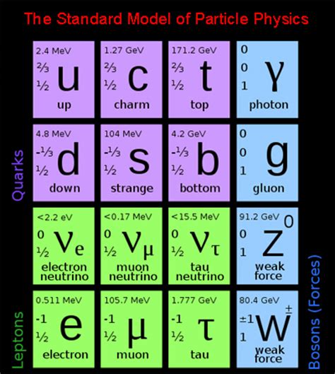 standard model particle at the lhc plus maths org