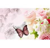 Interesting Flowers And Butterflies HDQ Images Collection HD Quality