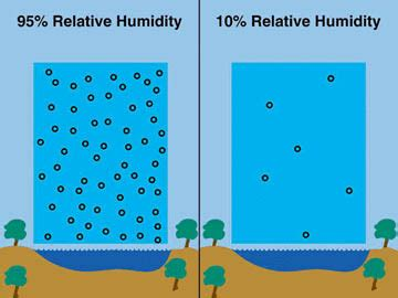 what is comfortable humidity what is a comfortable humidity level 28 images