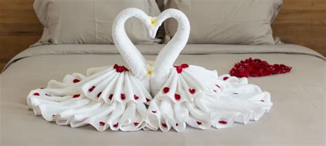 Swan Towel Origami - how to fold a swan towel cook