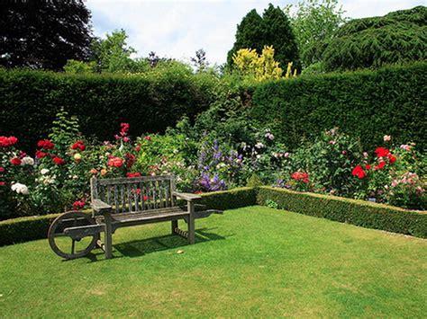 zanzare in giardino come effettuare la disinfestazione di zanzare nel giardino