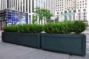 cement planters in new york city interior foliage design