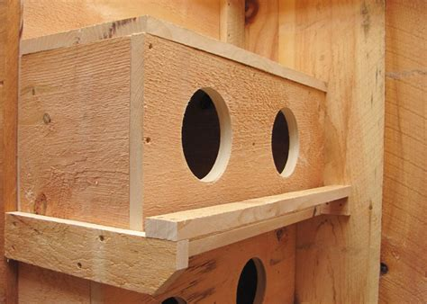 nest box chicken nesting boxes for sale wooden nesting box